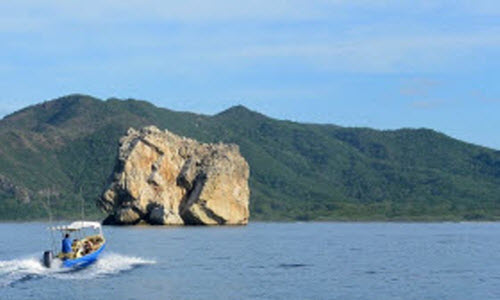 Beach Tours in Playa Grande Costa Rica